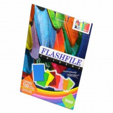 FOLDER FLASHFILE CARTA ARCO IRIS     PTE. C/100